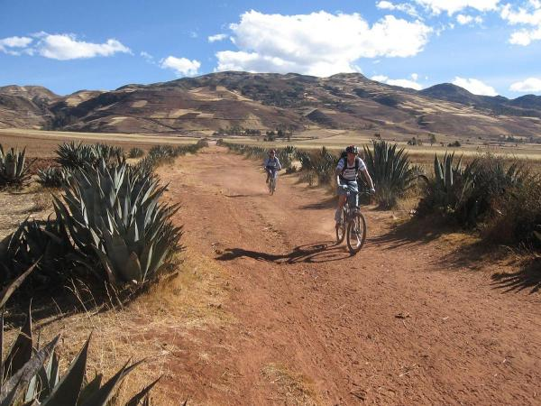 Trails of Andes and Jungle in Cusco