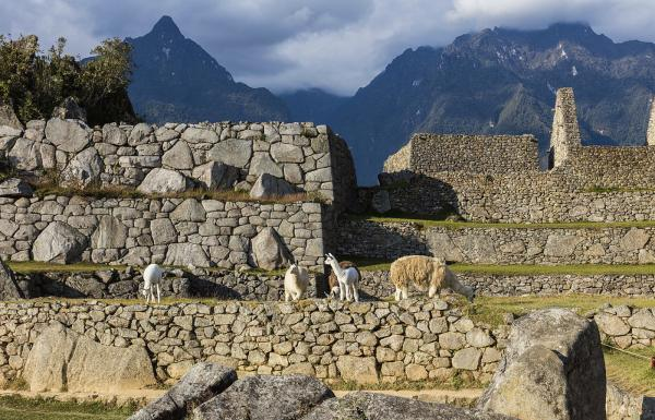 Day 2: Train: Ollantaytambo - Aguas Calientes - Tour in Machu Picchu - Overnight in Aguas Calientes